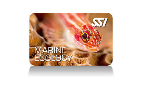 Free SSI Marine Ecology program